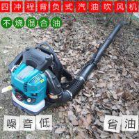 渭南背负式路面碎石树叶清理机 富兴灰尘路面吹雪机 汽油吹雪机多少钱一台
