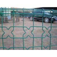 澳达网业生产淄博浸塑院墙防护网双圈围栏网