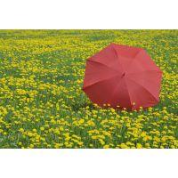 久禾板防风家居伞-昆明广告折叠伞-玉溪遮阳避雨伞定制