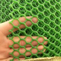 养鸡网厂家 养殖塑料平网 鸡棚鸭棚漏粪网