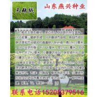 http://himg.china.cn/1/4_532_241310_635_800.jpg