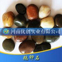 纯天然雨花石 南京原产地鹅卵石批发 精品五彩家装园林鹅卵石