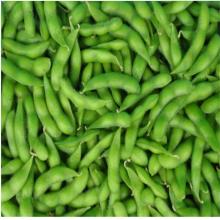移动方便毛豆秧果分离机 润丰鲜豆荚采摘机