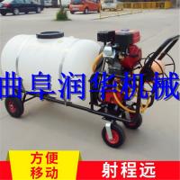 养殖杀菌消毒喷雾机 汽油大棚喷雾器 手推电动打药机