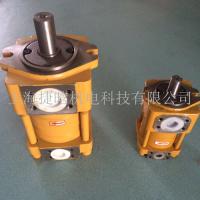 供应CHENGJIE液压泵NT4-D50F低噪音直线共轭内啮合高压齿轮泵