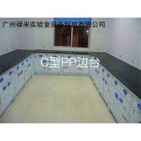 广州禄米实验室专业生产PP实验台,PP通风柜,PP药品柜