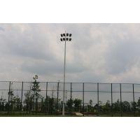 重庆运动场地照明灯杆 12米15米足球场灯杆