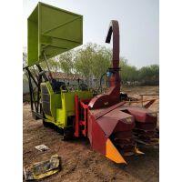 履带式青储机 优质黑麦草收割机 玉米秸秆回收机 青贮机 高清实拍图片