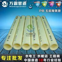 万霸PB采暖管 聚丁烯 地暖管 阻氧管 暖气管 盘管 20 4分