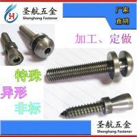 不锈钢特殊螺丝 广东特殊螺丝生产制造加工厂家