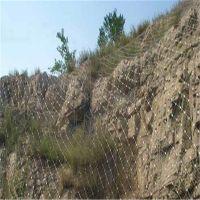安首绿化坡面用边坡防护网植物能够自由生长