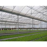 英德育苗大棚-育苗温室-大棚育苗-热镀锌钢管