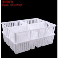 厂家直销 鸡苗筐 雏禽运输箱 适用于鸡苗运输车