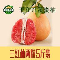 正宗琯溪蜜柚批发平和柚子琯溪三红蜜柚新鲜水果一件代