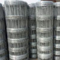 供青海海东草原网和海西牛栏网特点