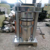 临旺全自动液压式榨油机 榨芝麻专用多功能液压榨油机