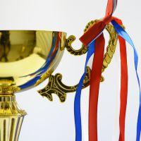 高档定制订购金属奖杯 塔坛杯少儿模特冠军赛金属奖杯 量多从优精兴厂家1133