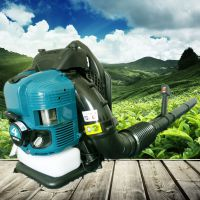 汽油轻便吹雪机 小型路面吹尘机厂家 佳鑫施工汽油吹风机