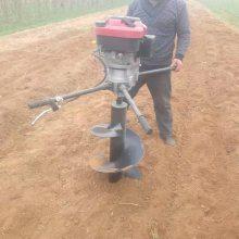 临沂市多用途坡地植树挖坑机 启航牌汽油二冲程手推施肥打窝机 城市绿化钻眼机厂家