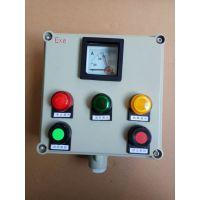 BZC51-A2D2K1G防爆操作柱 设备机旁操作控制箱厂家直销