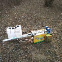 志成脉冲水雾烟雾弥雾机电启动大棚专用打药机农用小型果树烟雾机