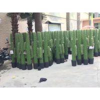 墨西哥仙人掌 仿真仙人掌柱 假仙人掌 办公室假绿植