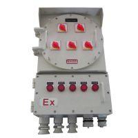 BXM-4/20K100防爆配电箱下进下出