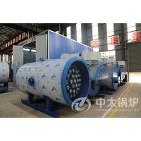电加热导热油炉,工业必备