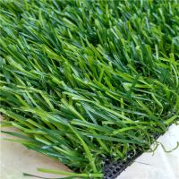 W型新款30mm双色人造草坪假草坪,时宽加密幼儿园装饰塑料草仿真草