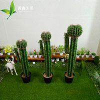 店面装饰仿真 盆栽 仙人柱 仿真墨西哥仙人掌 橱窗摆件塑料花