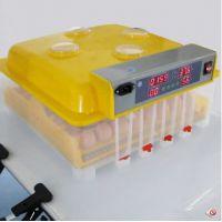 维谦全自动孵化机小型家用型鸡鸭鹅孵化器56枚孵蛋器孵化箱48枚