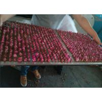 玫瑰花烘干机 微波玫瑰花真空干燥设备 专业厂家定做玫瑰花烘干机价格