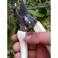 日本原装进口ARS爱丽斯130DX修枝剪进口园艺修枝剪刀果树剪树枝剪
