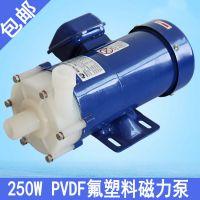 供应优质磁力泵MP-100R型PVDF氟塑料磁力泵 厂家直销小型磁力泵 PP塑料磁力泵 耐腐蚀磁力泵