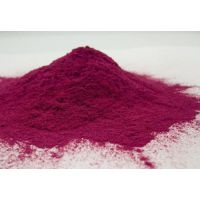 红甜菜粉 生产厂家直供 蔬菜粉 蔬菜粉 80-100目细度 天然色素