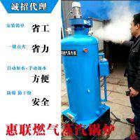 全自动灭菌酿酒烤酒豆腐洗浴蒸汽采暖热水燃气蒸汽节能锅炉