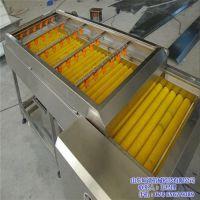 广州砂糖桔清洗机、山东坤德机械(图)、砂糖桔清洗机特点