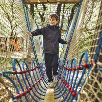 大型户外树上攀网设施、特色绳网探险设备定制、新型儿童绳网攀爬
