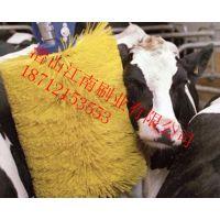 江南牌牛体刷设备 奶牛挠痒刷 带感应牛体按摩刷机
