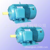 供应YD250M-12/6 15/24KW变极多速三相异步电动机 上海能垦双速电机
