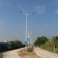 9米路灯灯杆 佛山厂家热销灯杆景观灯 太阳能LED路灯灯杆 太阳能灯