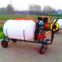 大容量药箱果园风送式打药机 启航大棚蔬菜喷药机 柴油自走式喷雾器价格