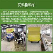 自动化养殖饲料车 长期定做电动撒料车 润华机械养殖设备