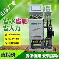 湖北水肥一体化设备 大棚蔬菜施肥机自动灌溉可手机远程无线遥控
