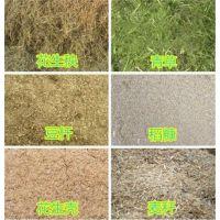 润丰秸秆铡草机 铡草粉碎机 家用型铡草粉碎机批发零售