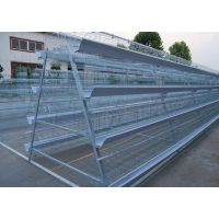 鸡笼阶梯式蛋鸡笼笼具及养殖设备,价格便宜可加工定做