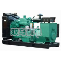 300KW康明斯发电机组 陆用机组 贵州发电机