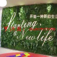 五色工艺 新款苔藓草皮仿真绿色植物墙外贸款式高品质直接成品仿真苔藓摆件