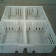 中兴加固小鸡周转筐 四格鸡苗周转箱