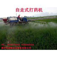 农作物灭虫打药设备成帆自走式打药机